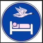 שינה עם מעוף