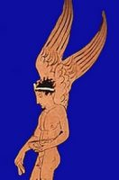 היפנוס מעופף ומרדים